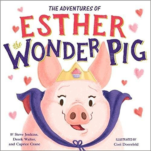Esther Picture Book