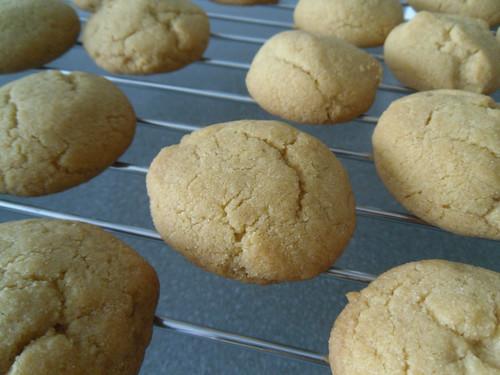 Cardemon-Semolina-Cookies-2