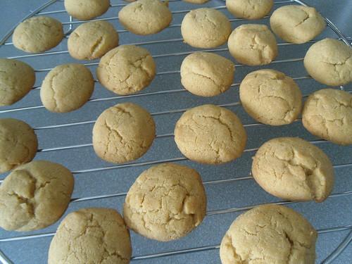Cardemon-Semolina-Cookies
